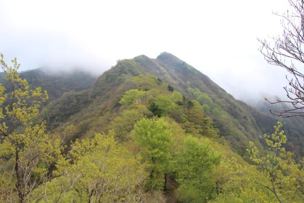 これから越える山・⑯ブログ用.jpg