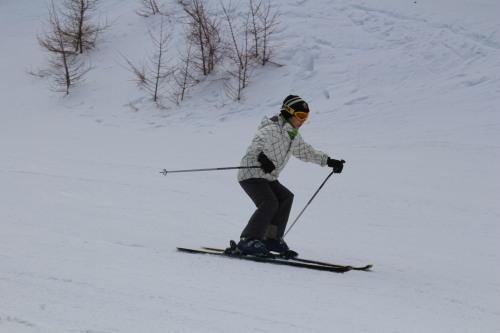 スキーブログ.jpg