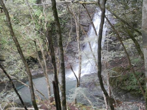 林道からの滝.jpg