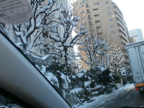 縮小・都内の雪.jpg