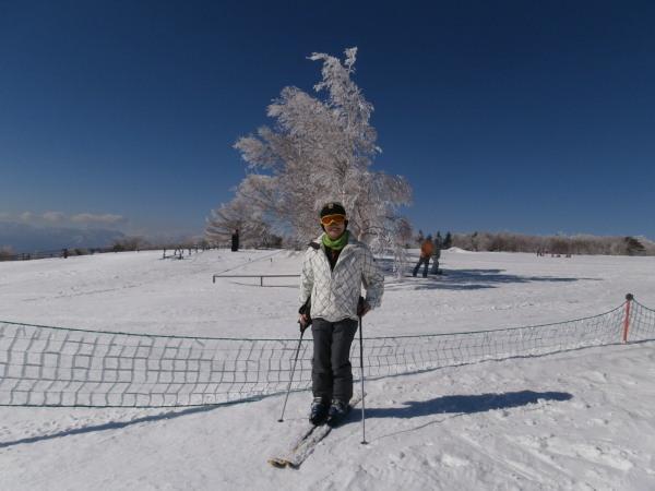 霧氷の木と・ブログ.jpg